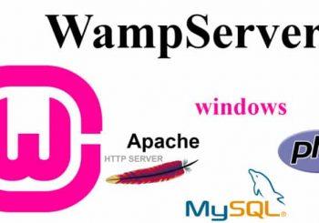 wamp-1-950x410